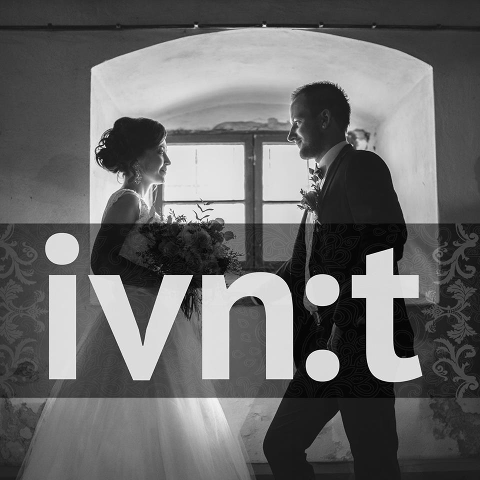 IVNt logo