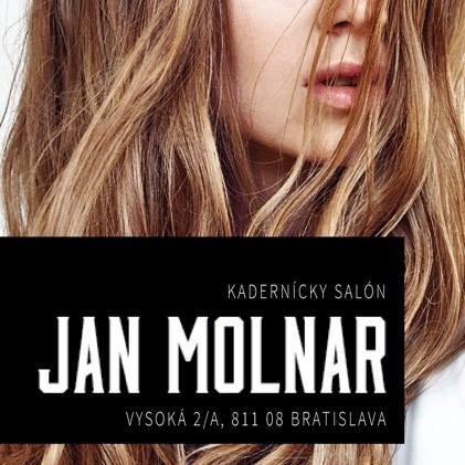 JAN MOLNAR Gallery salon logo