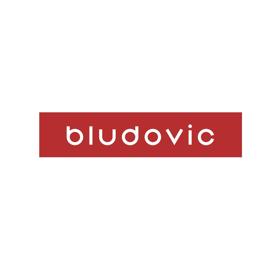 BLUDOVIC - Tvorba webstránok  logo