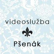 Ing. Ján Pšenák - Videoslužba logo