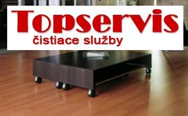 Topservis logo