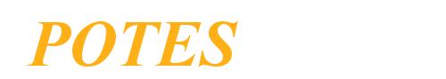 POTES s.r.o. logo