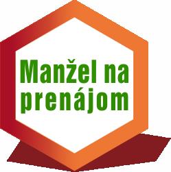 Manžel na prenájom logo