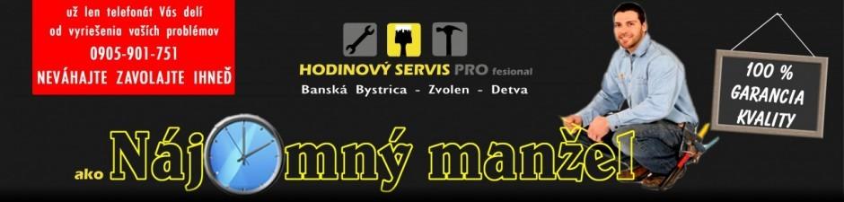 Vladimír Veis - hodinový manžel logo